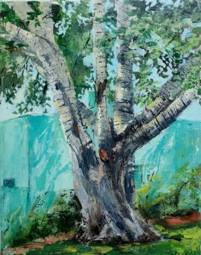 """Silver city birch"" by cecy rose"