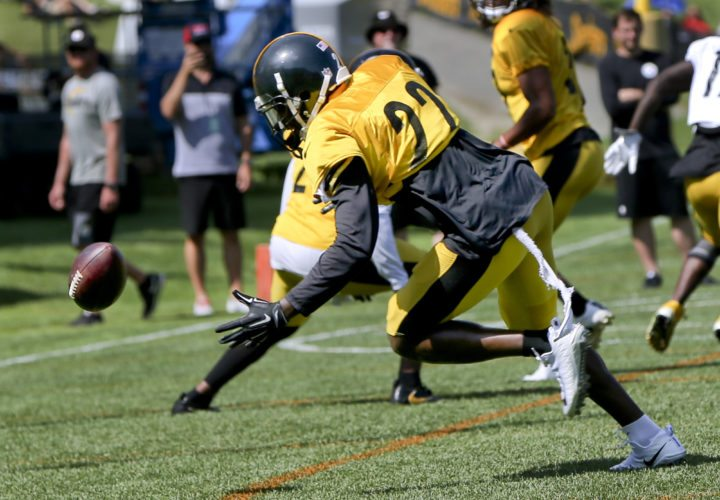 Pittsburgh Steelers cornerback William Gay (22) dives for a tipped ball in a short yardage drill during an NFL training camp football practice, Wednesday, Aug. 9, 2017, in Latrobe, Pa. (AP Photo/Keith Srakocic)