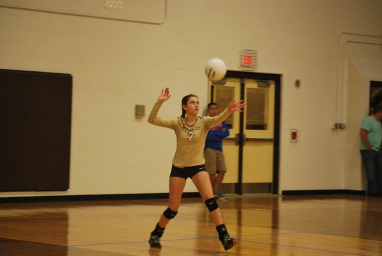 Photo by Cody Tomer John Marshall's Lydia Knutsen serves during the OVAC semifinals at John Marshall on Tuesday.
