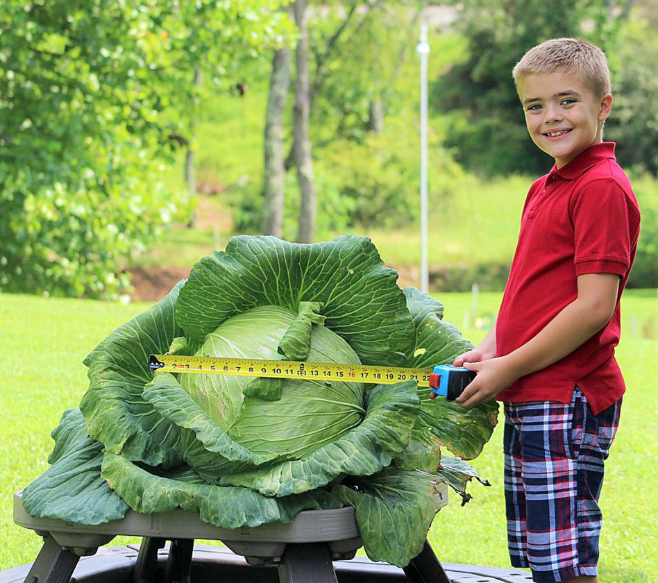 Local third-grader Brodie Triplett wins the 'best in state' title and earns a $1,000 scholarship after growing a 23-pound cabbage