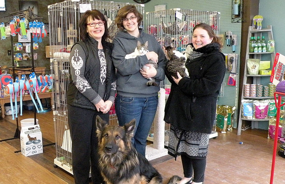 The Inter-Mountain photo by Lindsay Hawken Fancy Paws LLC, a pet boutique in downtown Elkins, has three cats available for adoption through an off-site program with the Randolph County Humane Society. Two of the cats, Hugh and Olive, are shown with store mascot Rico, as well as, from left, Humane Society program manager Carrie Shupp, Fancy Paws employee Emily Richards and Chelsea Langevin, secretary of the Humane Society's board of directors