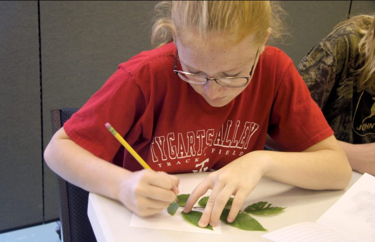Submitted photo Eighth-grade students from Tygarts Valley Middle/High School experience a range of hands-on activities during 'The Arts and The Earth' field trip last week in Elkins.