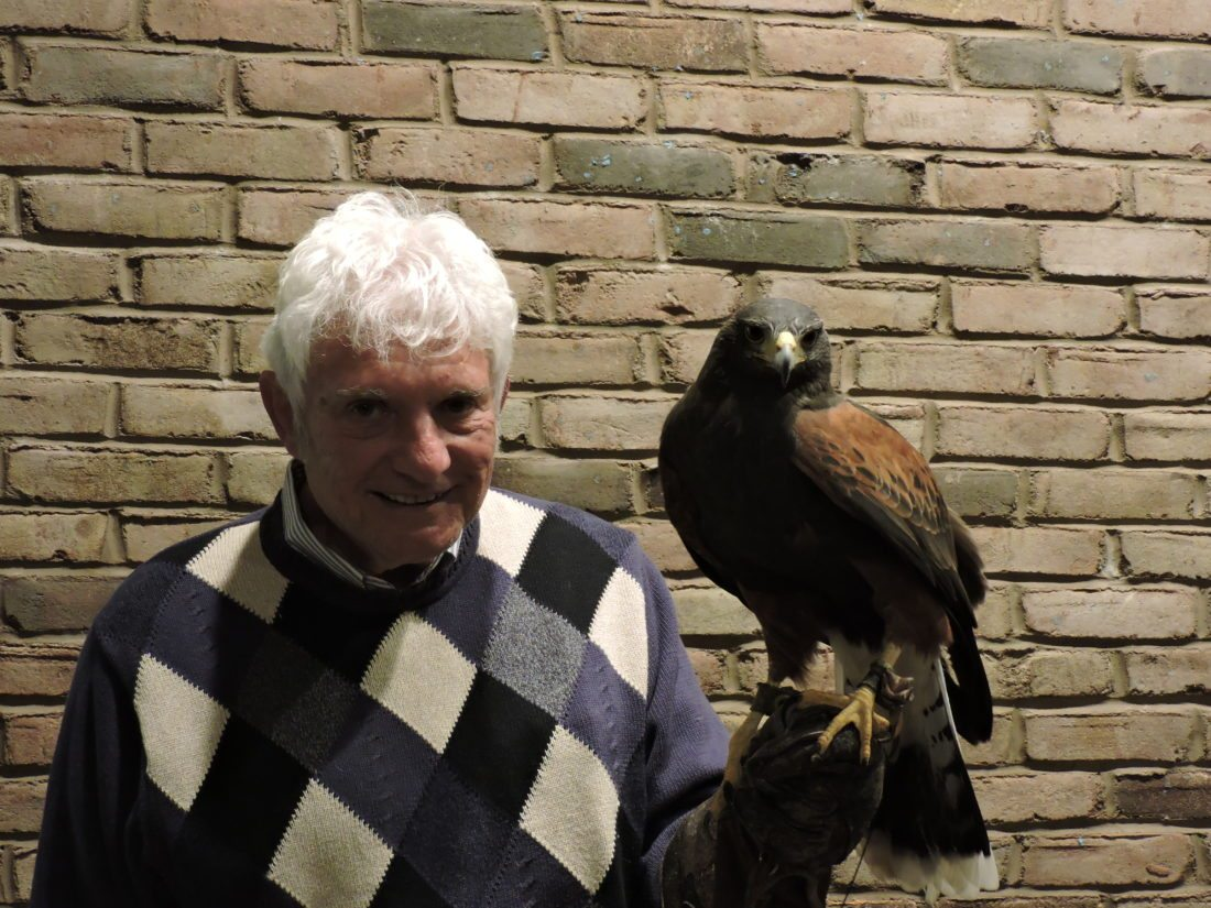 T-L Photo/DYLAN McKENZIE  Mick Brown poses with his Harris's hawk, Purdy. Brown is a master falconer and visited the Martins Ferry Public Library on Wednesday to help teach some basics of falconry to local residents in attendance.