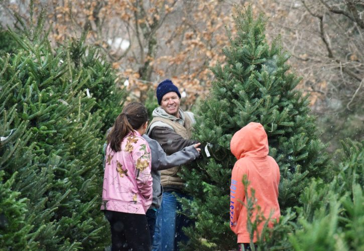 File photo/Scott McCloskey SCOTT BLACK of E. Black & Son Landscaping and Tree Nursery in Sherrard waits on a family selecting a Christmas tree. According to the CCH Environmental Group, used trees can be returned back to the outdoors where local wildlife can enjoy them as shelter.