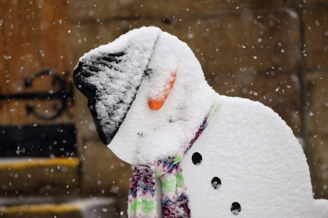 winter wallop 3