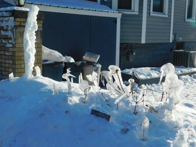 ice sculpture 3
