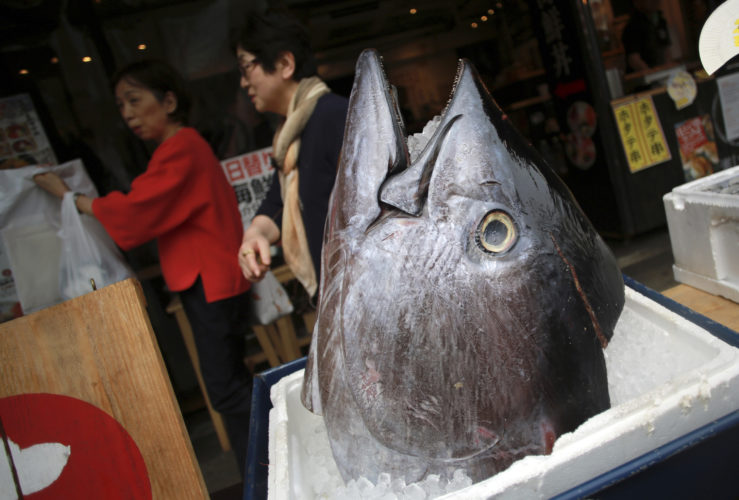 AP PHOTO Customers walk past the head of a bluefin tuna in front of a seafood restaurant at Tsukiji fish market in Tokyo Tuesday. Criminal and civil cases allege executives at the largest canned tuna companies were agreeing to collectively raise prices and limit promotions.