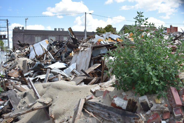 """eeds are growing in the debris from """"The Villager"""" Apartments fire which occurred May 5 of this year."""