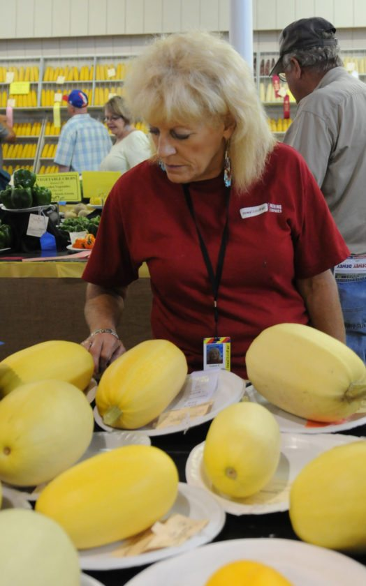 Colene Ferrin, of Marshalltown, looks at the vegetables on display at the Iowa State Fair on Aug. 16. (Iowa State Fair/ Steve Pope Photography)