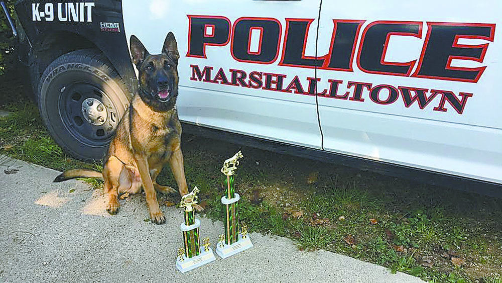 CONTRIBUTED PHOTO The Marshalltown Police Department K9 Unit of Lt. Kiel Stevenson and Raji and Sgt. Tom Watson and Jordy attended the Iowa Patrol Dog Certification. Both dogs were high finishers and are certified for another year. Raji sits at attention with his trophies from the event including the first place overall trophy.