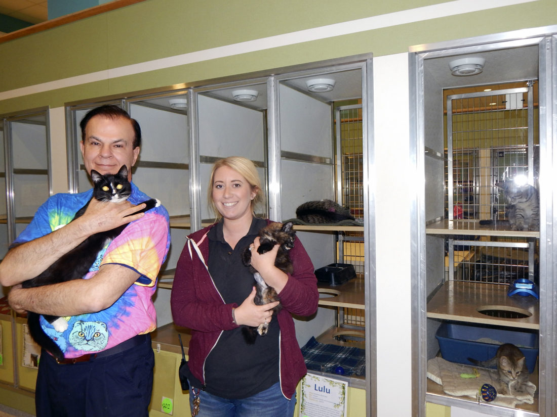 Tribune Chronicle/ Bob Coupland The Animal Welfare League of Trumbull County has a new director, Gary Pilcher, holding Mimi, a domestic short-haired cat, left, with Kayley Frost, AWL shelter manager / volunteer coordinator, holding Dazzle, a 12-week-old cat.