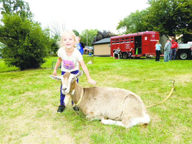 Tribune Chronicle \ Bob Coupland Gianna Smith, 5, of Newton Falls, pets a goat from Spring Mist Farm in Brunswick during the Seed to Table event on the grounds of the Newton Falls Public Library. Children showed the garden they worked on at the library once per week during the summer and also saw farm animals.