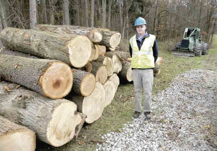 Tribune Chronicle / Jon Wysochanski  Mahoning Valley Sanitary District resident engineer Jon Jamison stands next to a stack of timber recently cut from its property. The MVSD cuts trees down annually to minimize the risk of forest fires. The trees eventually are processed to build furniture.