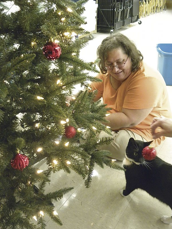Michele Garman, Vienna Neighborhood Watch president decorates the tree at the fire department while keeping a close eye on Oscar, the station cat.  The group decorated the station for the holidays, Tuesday evening.