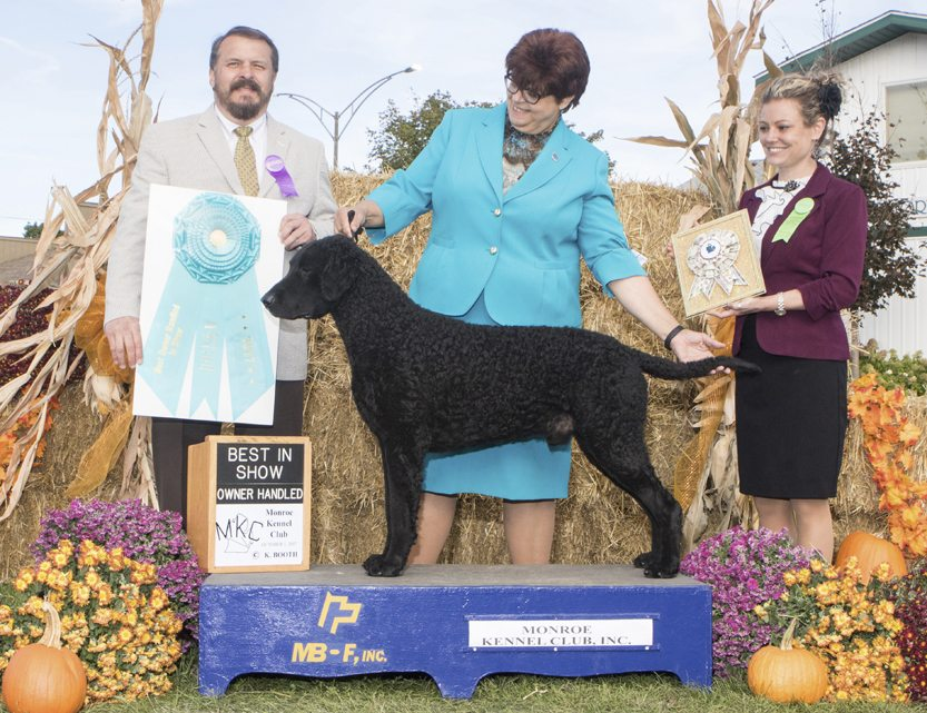 """Special to the Tribune Chronicle Sue Davis of Vienna, center, with her 4-year-old dog, Flash, a black curly coated retriever, show off an award Flash won last year that enabled them to compete Tuesday at the Westminster Kennel Club Dog Show in New York. Flash won """"Best in Breed."""""""