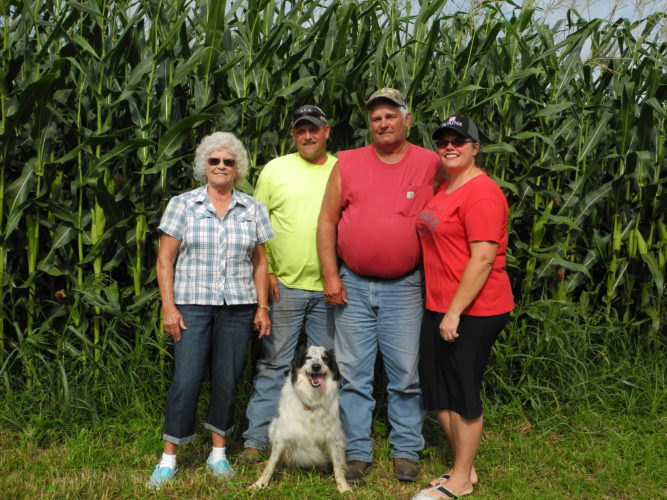 "OHIO CENTURY FARM — Showing that the corn really does grown ""high as an elephant's eye,"" Mercer family members from left, Carolyn, Bud, Larry and Jody, stand before one of their many acres of crops. The family was recognized with a framed citation from the Ohio Department of Agriculture during the Jefferson County Fair declaring the farm to be an Ohio Century Farm. - Esther McCoy"