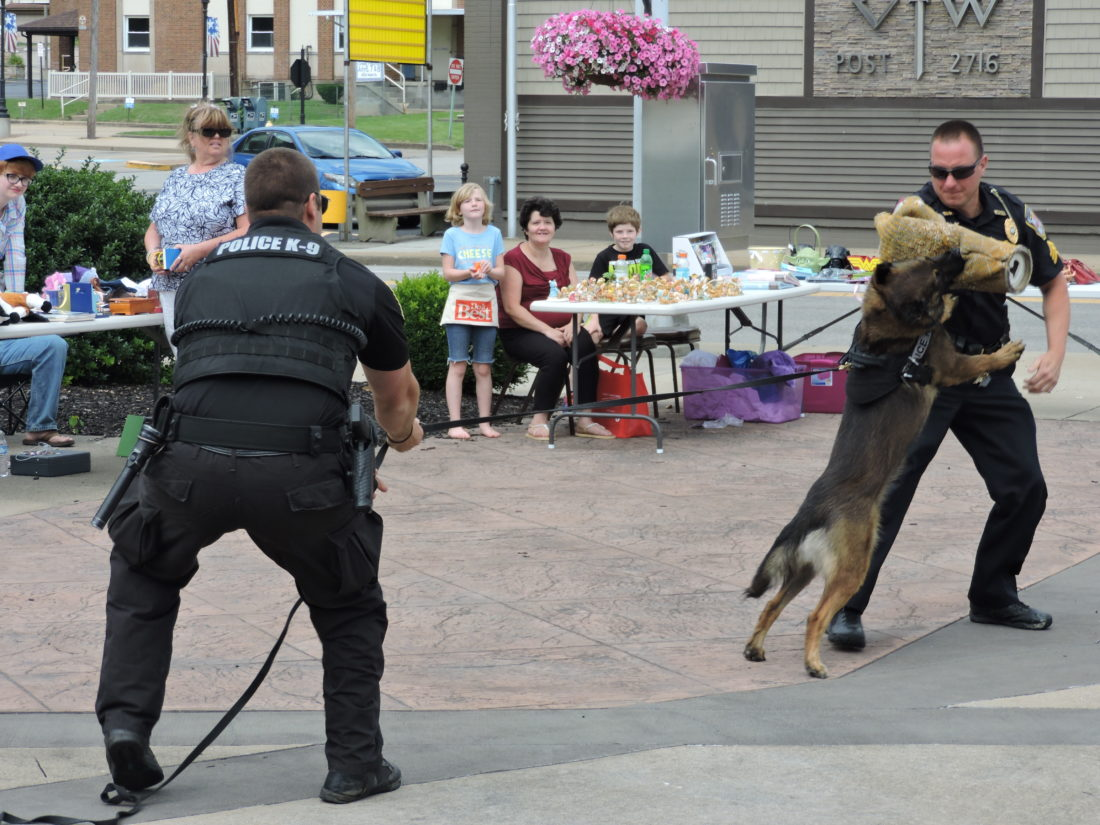 Staff photo K-9 DEMONSTRATION — Members of the Weirton Police Department's K-9 Division hold a demonstration for residents during a community event.