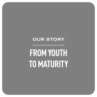 Youth to Maturity Process