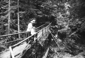 Bridge_in_schmitz_park_1910_sma_30259