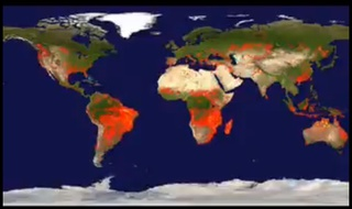 image of worldwide wild fires on a single day