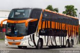 UTIL - União Transporte Interestadual de Luxo  por Reginaldo Alves