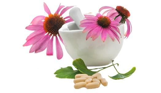 Botanical Medicine Fergus Ontario