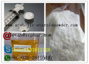 High Purity Steroid  Testosterone Propionate  for fat burner  muscle gain
