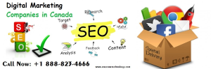 Best Local SEO Company In The United States | One Core Technology