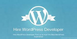wordpress Developers India - silicon valley