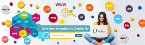 Free Domain Authority Checker Tool