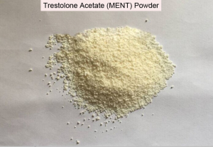 Trestolone Acetate MENT Raw Powder China Supplier