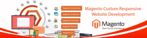 magento plugin ,website development company