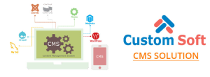 Custom Soft Content Management System