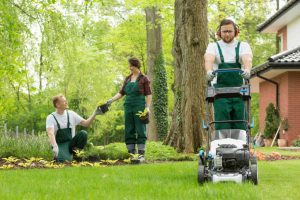 Victory Landscaping