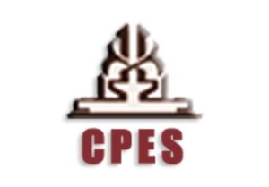 CPES - Client Property Evaluation System