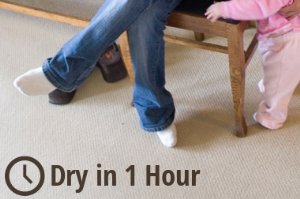 Our low moisture process dries in only 1 hour