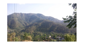 Land for sale in Solan