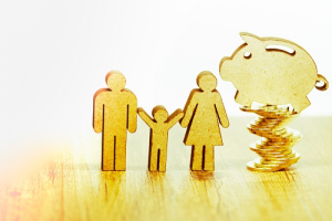 Family Office Wealth Planner in Bangalore