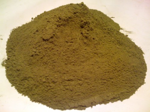 Buy Erythroxylum Coca Leaf Powder Online