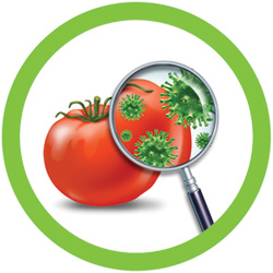 foodsafetytrainingcourses