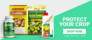 pest control online store