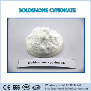 Boldenone Cypionate anabolic powder for weight loss