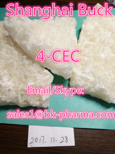 hot hot hot sale 4-cec best quality 4-cec from China RC Vendor sales1@bk-pharma.com