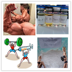 nandrolone decanoate  for fat burner and  bodybuilding supplements