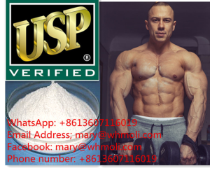 T4 sarms mary@whmoli.com  body building hormone safe and healthy manufacture