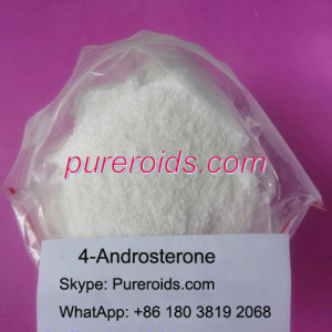 4-Androsterone Raw Powder China Supplier