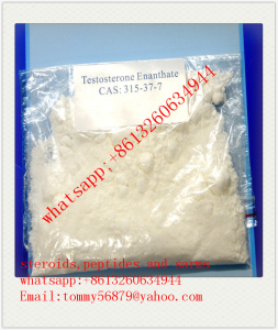 Testosterone Enanthate steroids powder  supply whatsapp:+8613260634944