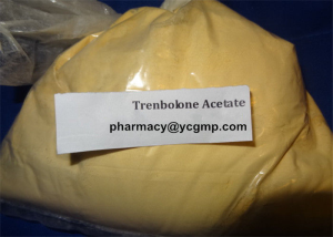 High quality Trenbolone Acetate for fat burner and  bodybuilding supplements