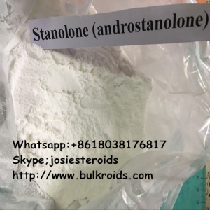 Stanolone Androgenic Steroid Skype;josiesteroids