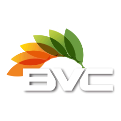 BVC Blinds Cleaning - Logo